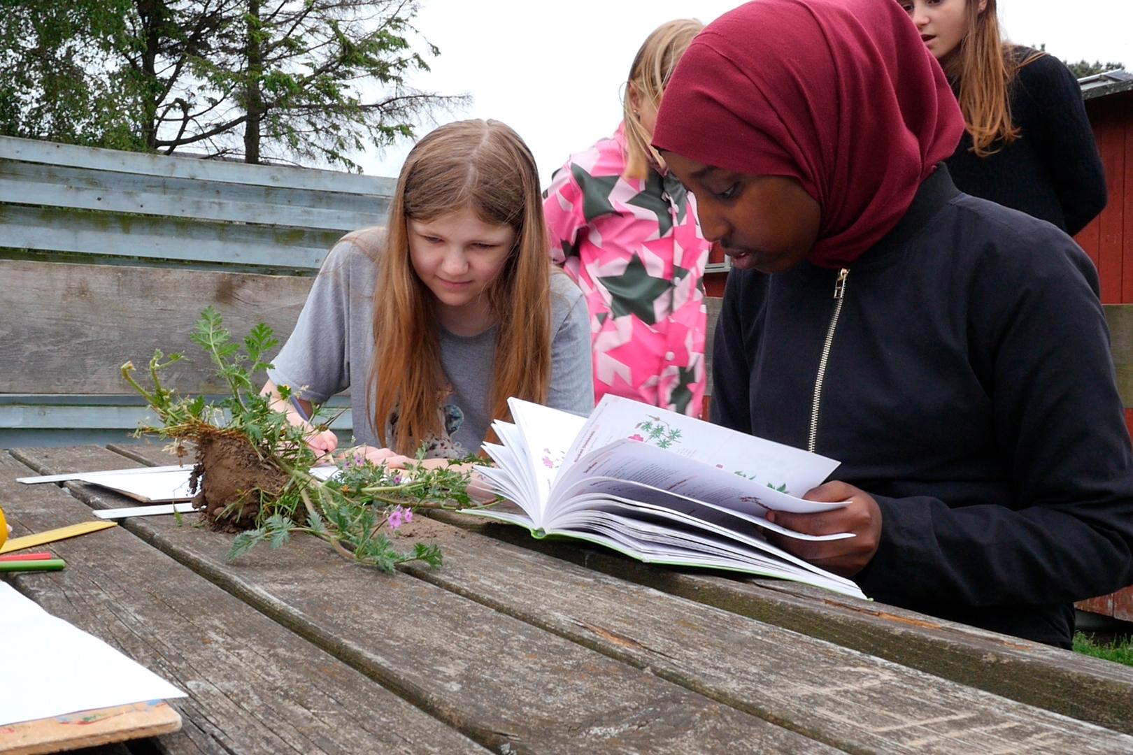 Elever fra Nørrebro Park Skole og Den Grønne Friskole hjælpes om at artsbestemme blomster. Fotograf: Julie Blicher Trojaborg