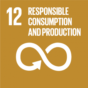 global goals responsible consumption and production FNs verdensmål ansvarligt forbrug og produktion