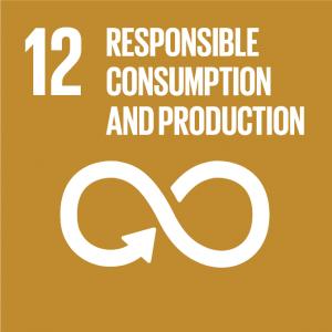 global goals responsible consumption and production FNs verdensmål ansvarligt forbrug og produktion